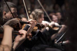 音楽と人の脳